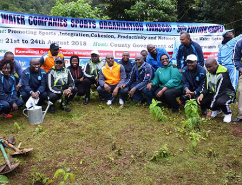 Tree Planting at Zaina
