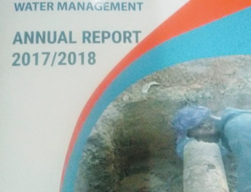 Non-Revenue Water Management Champions